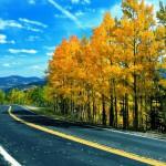 Sonbahar Araç Bakımı